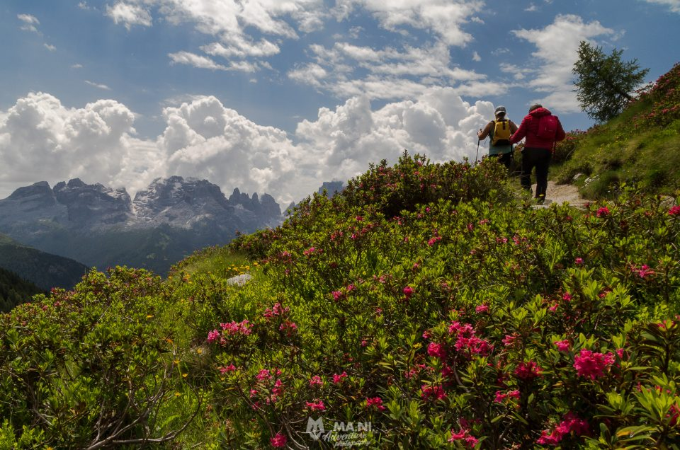 Trekking nelle Dolomiti di Brenta