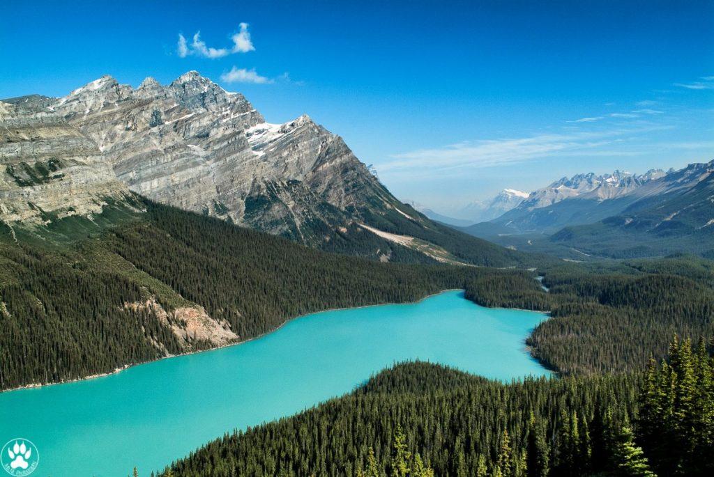 Peyto Lake, Banff National Park - Alberta, Canada.