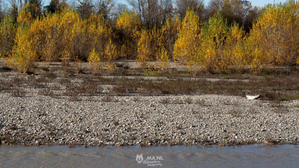 La sponda reggiana del fiume Secchia